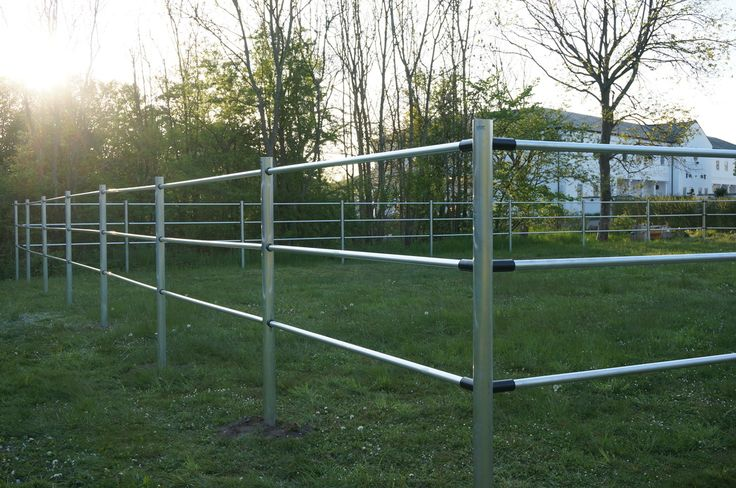 Horse paddocks at Tailormade Horses, Denmark. SILBER electric fence.