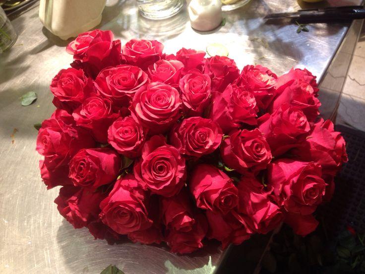 50 rosa som stikke inn i oasis.