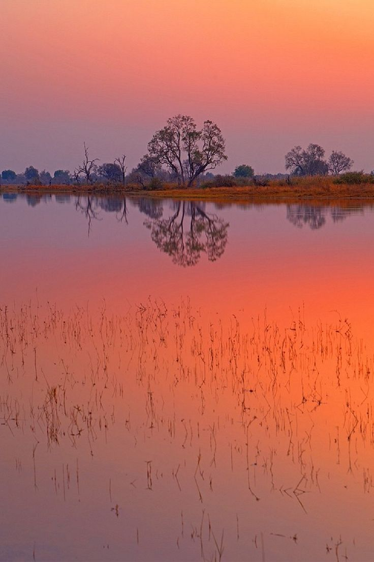 Mellow Morning, Okavango Delta, Botswanna, South Africa, by Aubrey Stoll, on 500px.