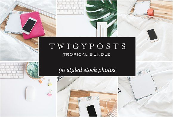 MASSIVE Tropical Stock Photo Bundle by TwigyPosts on @creativemarket