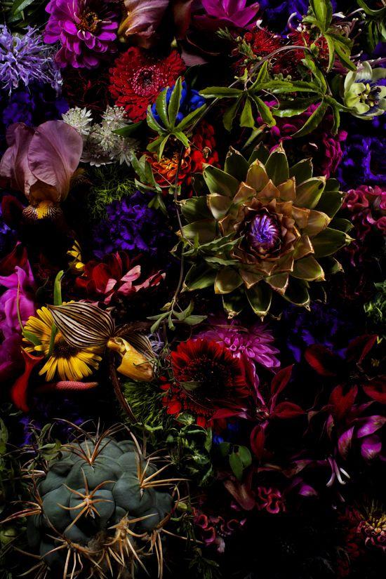 Flower art by Makoto AZUMA, Japan