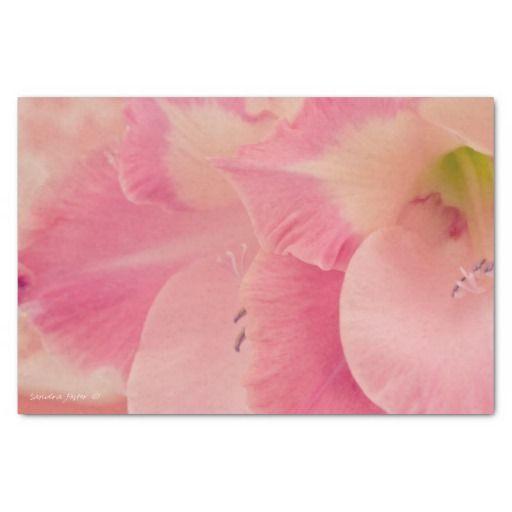 """Gladiola Petals 10"""" X 15"""" Tissue Paper"""