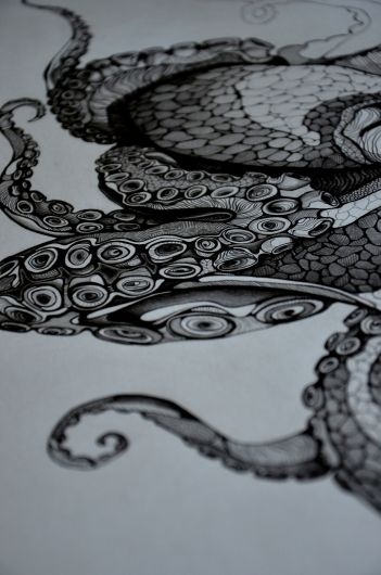 octopus. Would be a cool tattoo on your shoulder