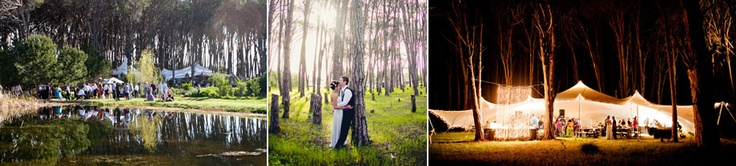 Wedding/Event Venue: Winery Road Forest, Stellenbosch.