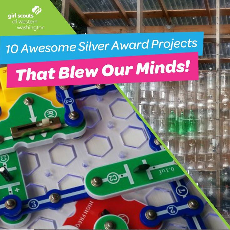 Over the past year, 243 local Girl Scouts from eleven counties completed almost 13,000 hours of service through 115 Silver Award Projects! We rounded up 10 of the most creative Silver Award projects  this year! #SilverAward