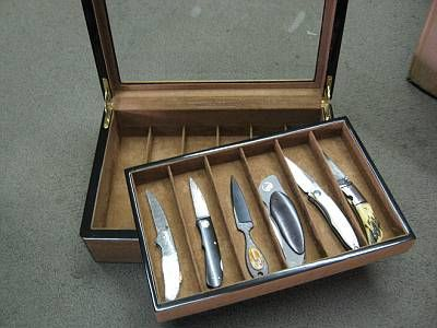 Delightful Gift Idea For David: William Henry Display Case D