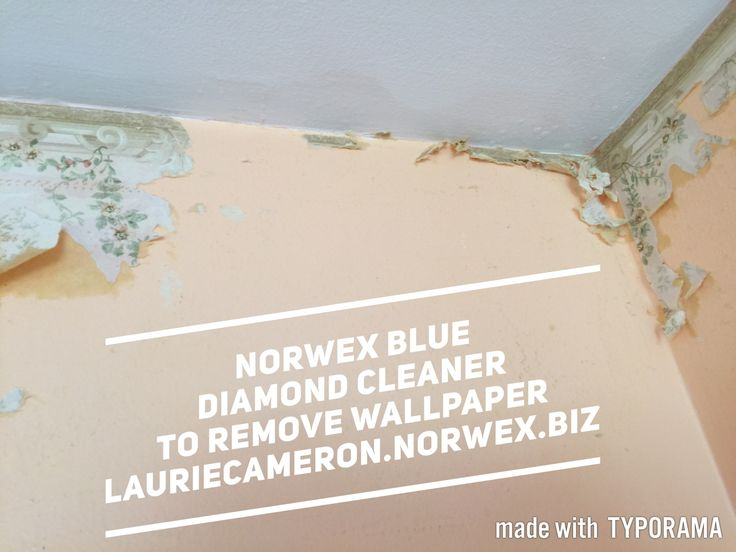 Norwex Blue Diamond Cleaner diluted and sprayed on wall paper border to be removed.