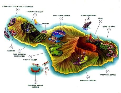 things to do in Maui   Here are the top ten things to do while on the island.