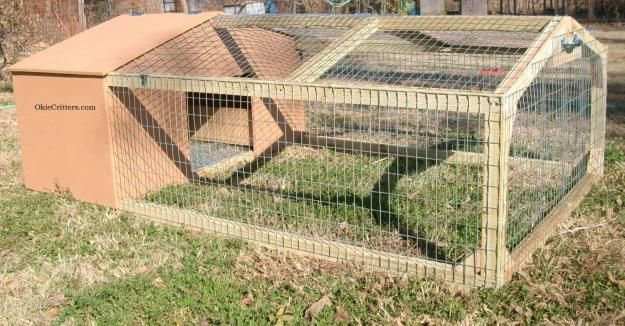 Chickens, quail, ducks... Simple backyard chicken tractor.