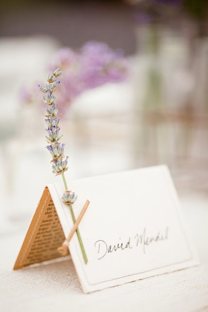 Place cards with a little wild flower attached :) precious also I give you full access to our garden