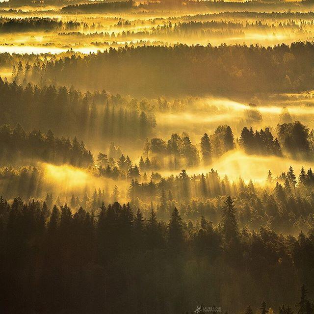 Beautiful foggy autumn sunrise at Aulanko, Hämeenlinna, Finland By Lauri Lohi