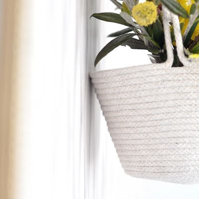 The Penny Drops: hanging baskets that sit gently against the wall - not rubbing or scratching and plenty of airflow