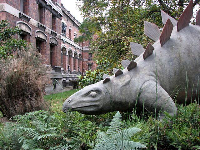 Les 258 meilleures images du tableau dinosaures sur pinterest dinosaures parc jurassique et film - Jardin des plantes paris dinosaures ...