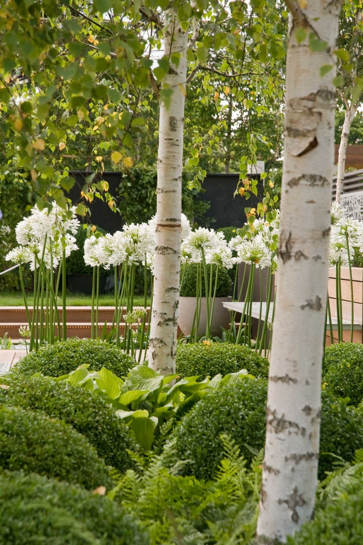 Hampton Court Palace Flower Show 2012 the beautiful contemporary contemplation- photo by Julia Stanley, garden Designed by  OneAbode Ltd  Built by Morgan & Neal Ltd
