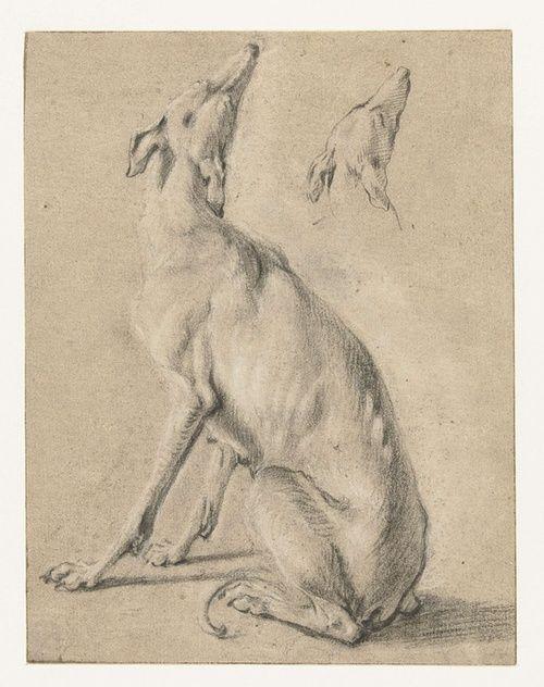 Frans Snijders, Greyhound studies (1589)
