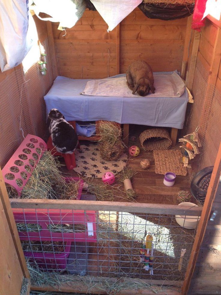 Donny & Lola's shed. - Rabbits United Forum