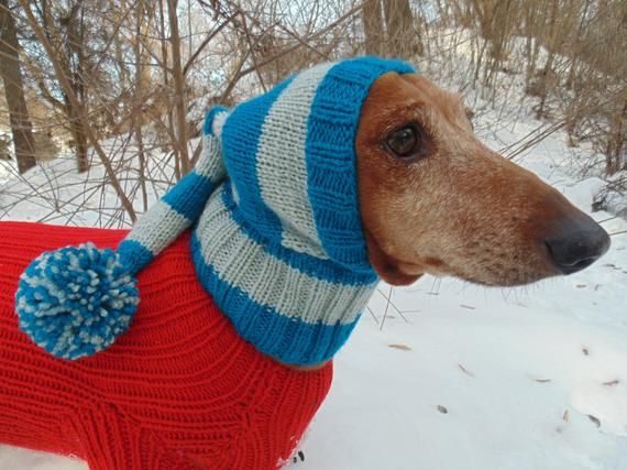 Christmas Winter Hat Elf For Dog With Pompon Etsy Winter Hats Warm Winter Hats Puppy Clothes