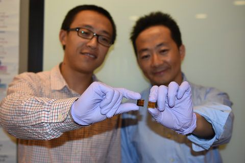 Stability Challenge in Perovskite Solar Cell Technology | Science and Technology Research News