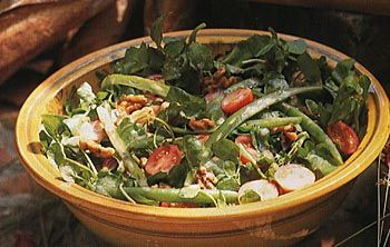 Find the recipe for Green Bean, Watercress and Walnut Salad and other watercress recipes at Epicurious.com