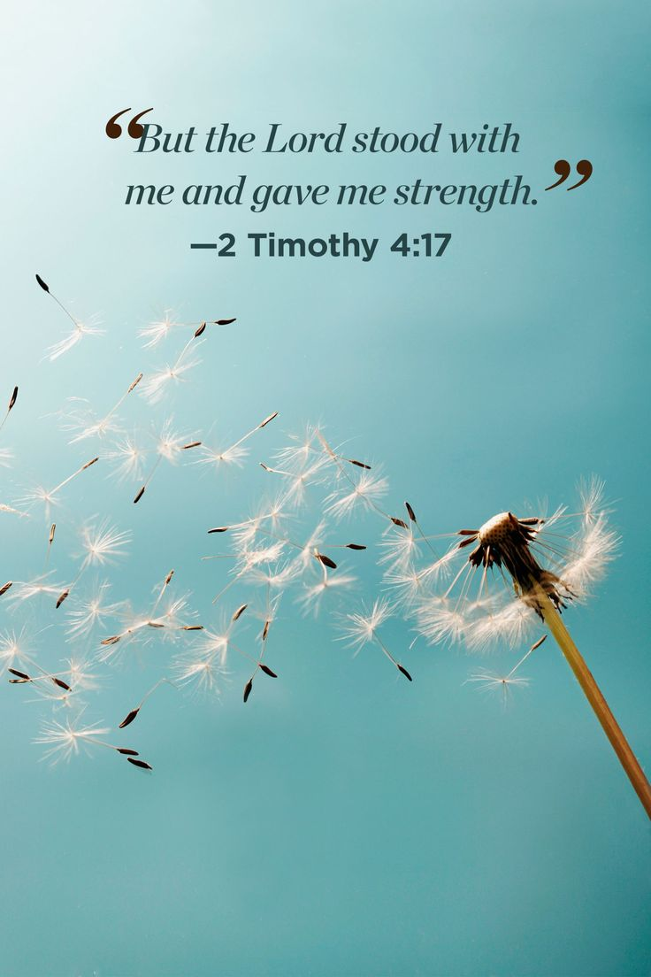 30 Bible Quotes That Will Change Your Perspective on Life
