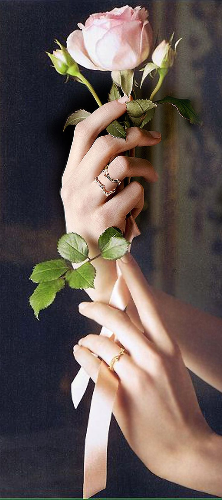 "anbenna: "" Bois de Rose, Dior "" Perfect Rose pinterest.com/Luxurydotcom pinterestluxury"