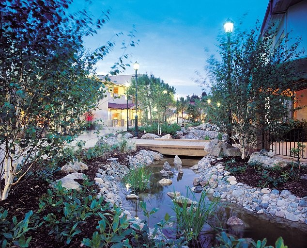 25 Best Images About Center Parcs On Pinterest Short Break Holidays Places And Pools
