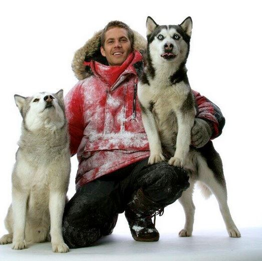 Paul Walker - Eight Below this was the first movie that I saw him in and I was only 7 or 8 years old. I thought that he was just one of the greatest actors ever and as the years went on and he started acting in other movies I just loved him even more RIP you wont be forgotten