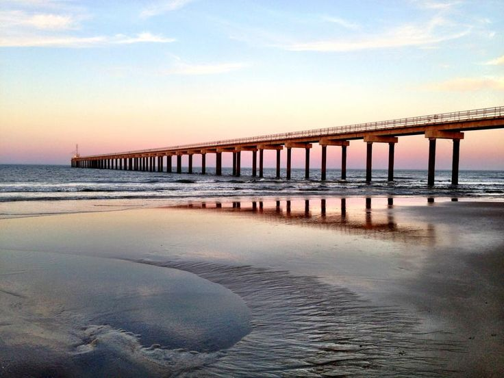 17 best images about piers on the outer banks of nc on for Fishing in duck nc