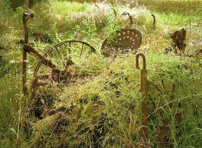 Gary Albertson, Silent Farmer