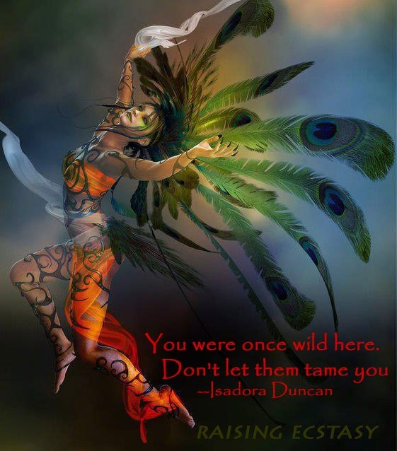 Warriors Of The Rainbow Tribe: 18 Best Images About RAINBOW WARRIORS On Pinterest