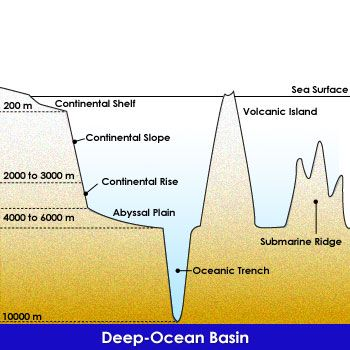 Continental+Rise | ... continental shelf continental slope continental rise abyssal plain
