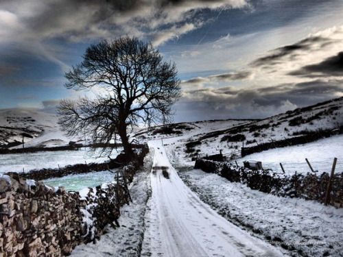 pagewoman: Eden Valley Cumbria England by Suzanne McNally