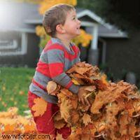 Insbesondere kleine Kinder erfassen ihre Umwelt durch Bewegung und sinnliche Erfahrungen. Mit unserem Angebot bieten Sie den Kindern eine Fülle solcher Erlebnisse. Dabei haben die Kleinen zudem noch viel Spaß und erleben den Herbst.