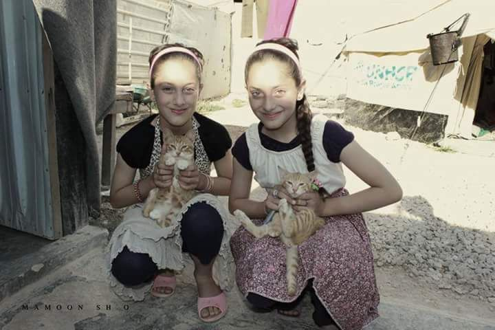 Life is difficult still, we're taking care of our cats Syrian girls refugees in Zaatari camp #SyrianRefugees #Syrianchildren