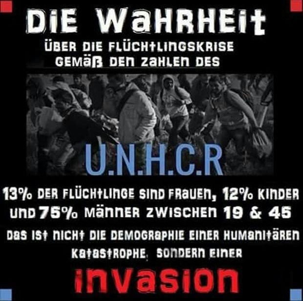 Die Wahrheit über die Flüchtlingskrise gemäß den Zahlen des UNHCR 13% Frauen, 12% Kinder, 75% Männer zwischen 19 und 45 Jahren! Das ist nicht die Demographie einer humanitären Katastrophe sondern einer INVASION