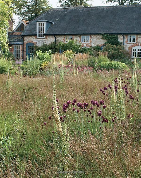 17 best images about planting design piet oudolf on for Piet oudolf favorite plants