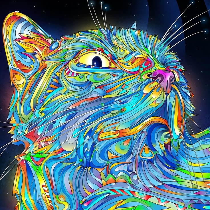 In dit beeld zie je een hoop kleuren. Er zitten veel blauwe tinten in, en veel rode/oranje tinten.  De twee soorten tinten vormen samen een warm/ koud contrast. De kleuren samen vormen een kat.