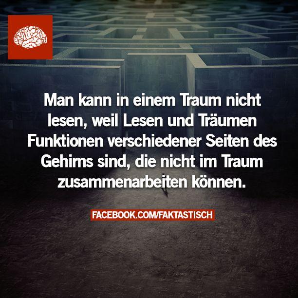 http://faktastisch.net