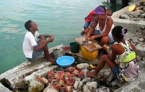 Family Shelling Crabs Santa Cruz del Islote Island, Colombia, the most crowded island in the world #TravelTuesday #tt. #JustGo! #travel www.examiner.com/article/the-most-crowded-island-the-world
