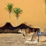 Propuesta: El desierto en familia con ViajesMarrakech
