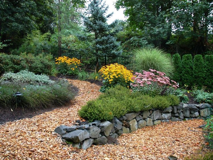 Low Maintenance Landscaping with Flowers