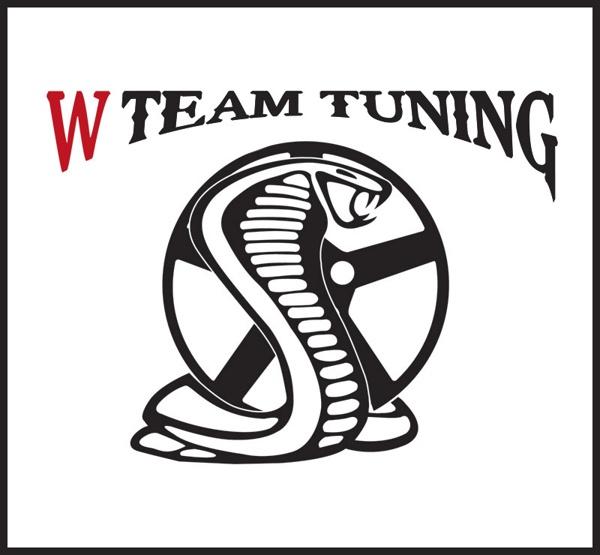 W Team Tuning Identity by Claudio Coutinho, via Behance