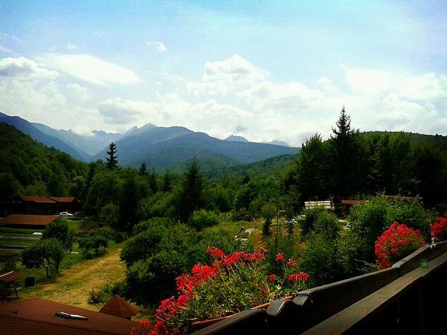 Summer in Transilvania by metela, via Flickr