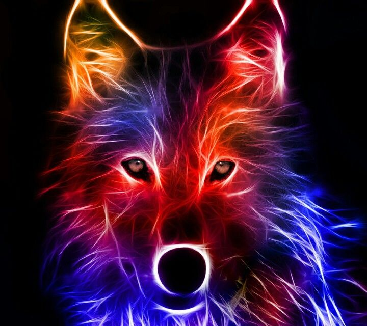 Neon Light Wolf Wallpaper Is Cool It Works On A Tablet Too If You Are Wondering Where I Got To Offer Zedge