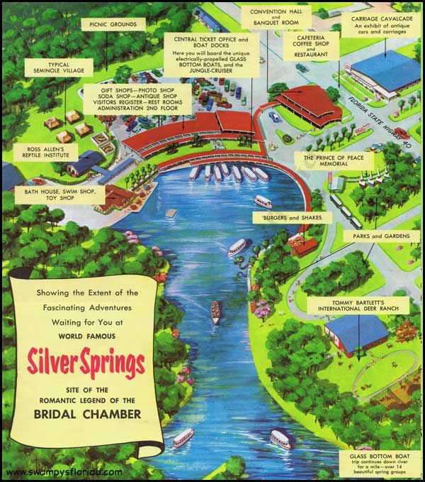 Silver Springs Silvers: Swampy's Florida Ads : Silver Springs Brochure Along The