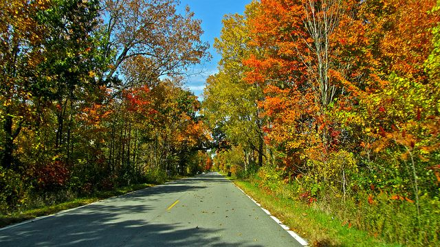 Four Beautiful Fall Foliage Tours for Motorcyclists