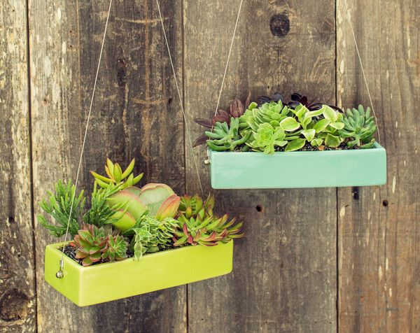 Rectangle Hanging Planter Hanging Succulents