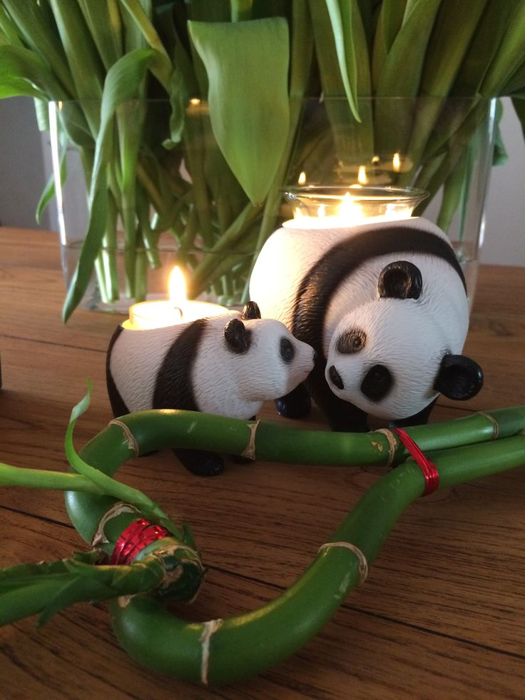 Earth Hour Panda´s