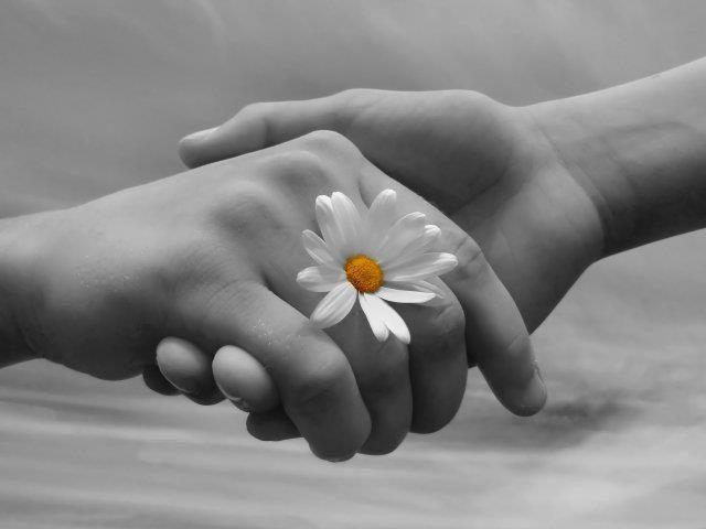 """""""Desejo paz ao acordar, fé no caminhar. Força para não cair, sorrisos para não chorar. Firmeza no pensamento, gratidão pelo amanhã. Desejo que todos os próximos dias sejam salpicados de felicidade e recheados de amor!"""""""