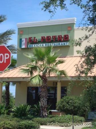 El Potro Mexican Restaurant (Orlando)